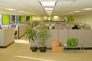CubiclesOfficeSpace